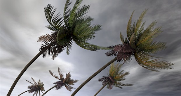 Hurricane winds coming in over Key West. MORE: AboutFantasyFest.com